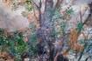 http://www.ettitour.com/Assets/Images/7/11/Small/f7d_GRANDEE.jpg